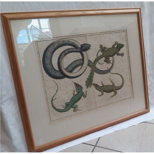 "Framed Art Print - Snake & Other Reptiles 32""X28"""