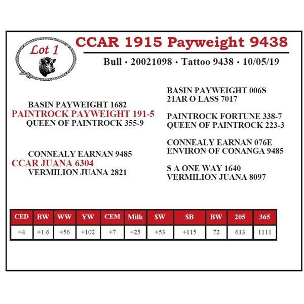 CCAR 1915 Payweight 9438