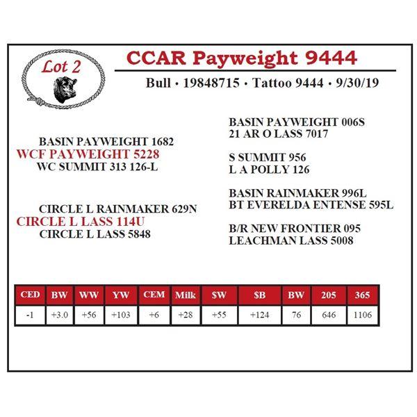 CCAR Payweight 9444
