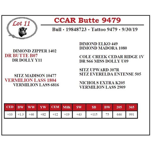 CCAR Butte 9479