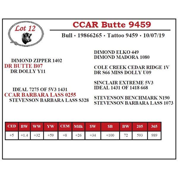CCAR Butte 9459