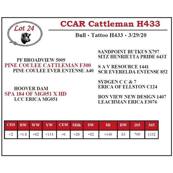 CCAR Cattleman H433