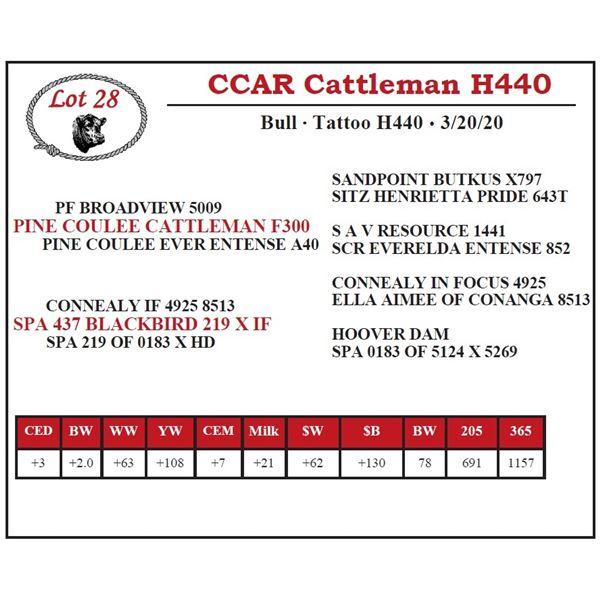 CCAR Cattleman H440