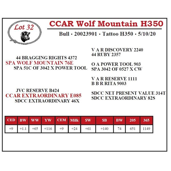 CCAR Wolf Mountain H350