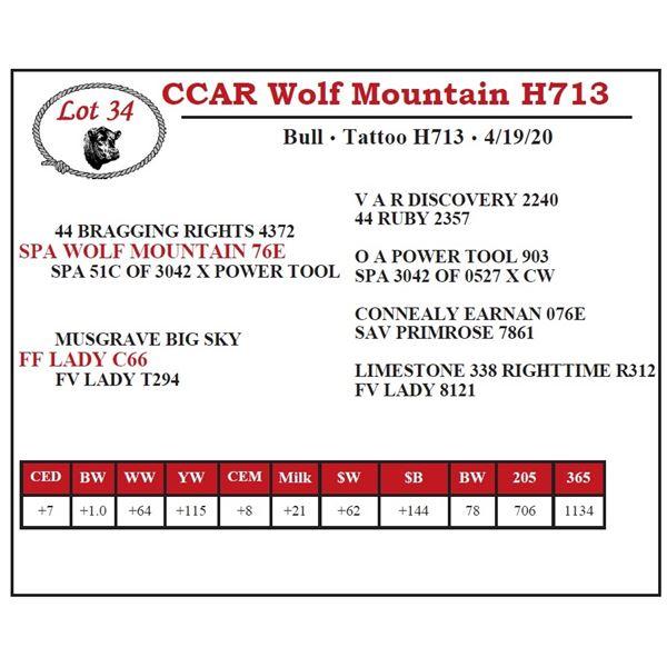 CCAR Wolf Mountain H713