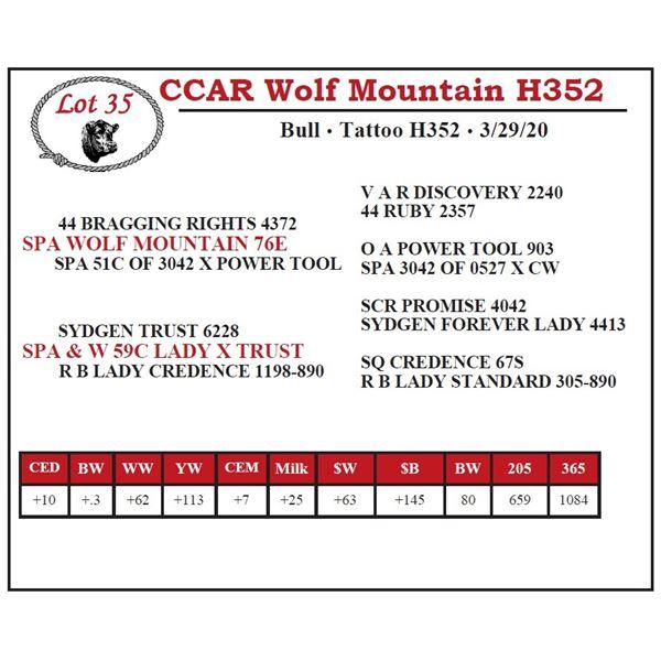 CCAR Wolf Mountain H352
