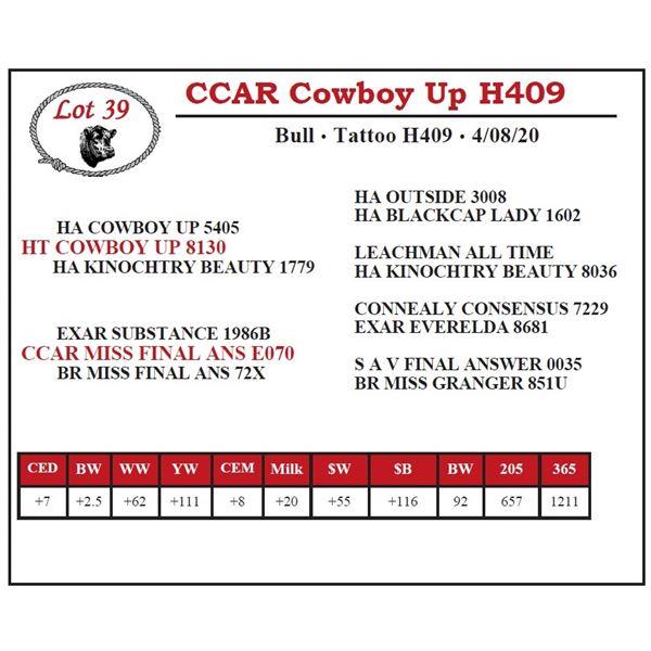 CCAR Cowboy Up H409