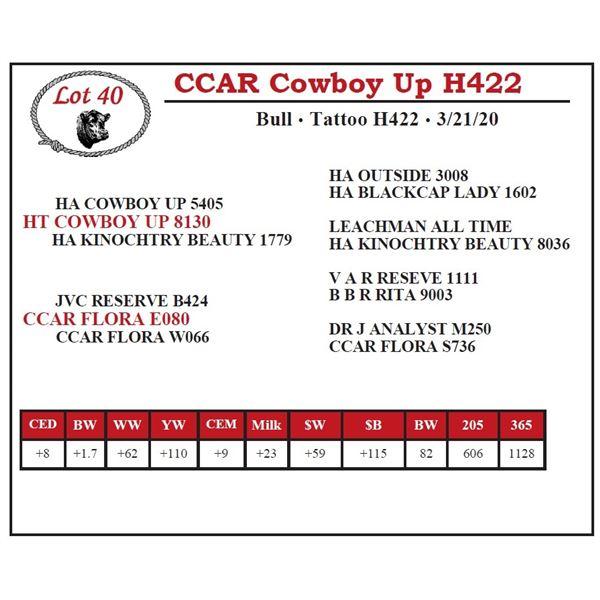 CCAR Cowboy Up H422