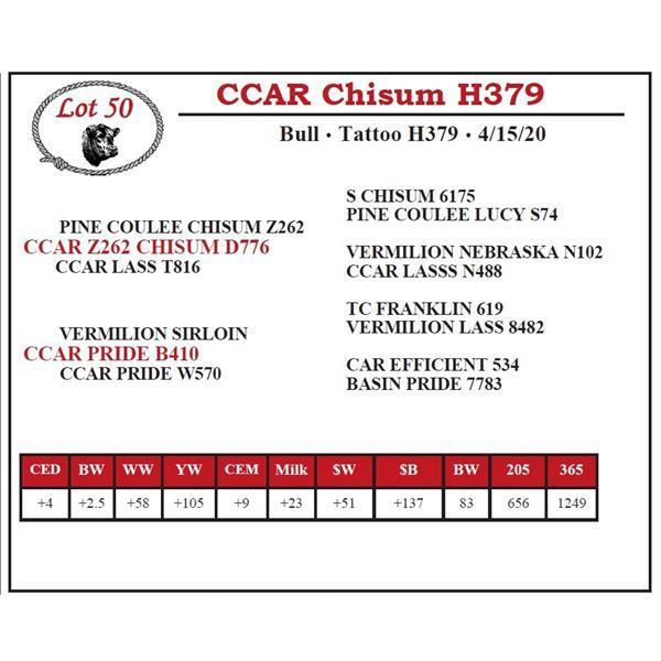 CCAR Chisum H379