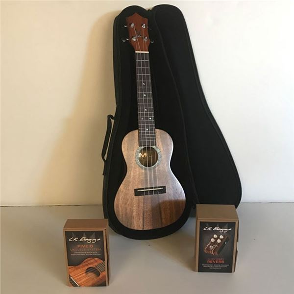 Ukulele with Pick Up System, Preamp, Element Pickup and Volume Control