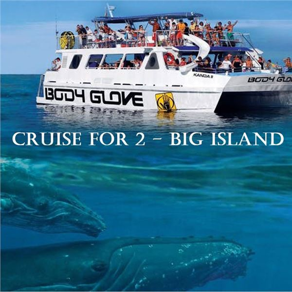 Deluxe Snorkel BBQ & Dolphin Watch Kona from Body Glove Cruises for 2