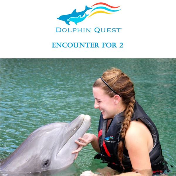 Dolphin Quest Encounter for 2 (Oahu)