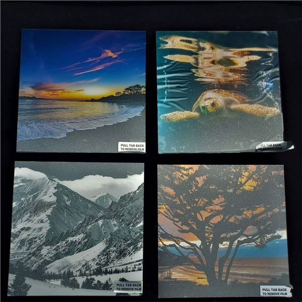 (4) metal framed prints 10 x 10'' by Aaron Chang, New