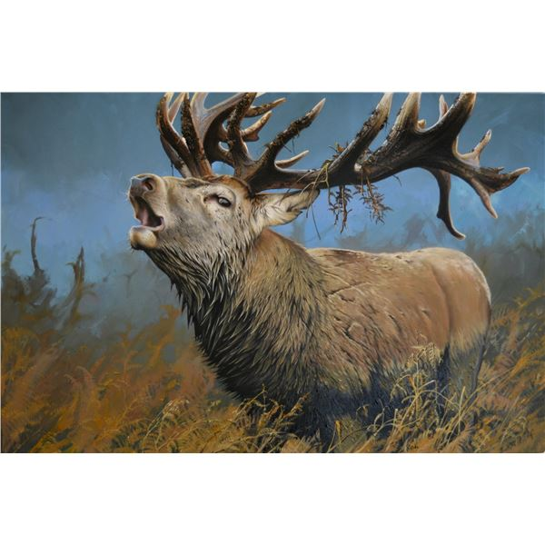 """LOWELL SHAPLEY ART:  """"ROARING RED STAG"""" -  ORIGINAL PAINTING BY LOWELL SHAPLEY"""