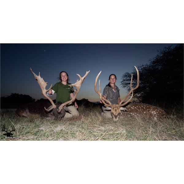 RECORDBUCK RANCH: 3-DAY, 2-NIGHT EXOTIC GAME TROPHY HUNT FOR 2 HUNTERS