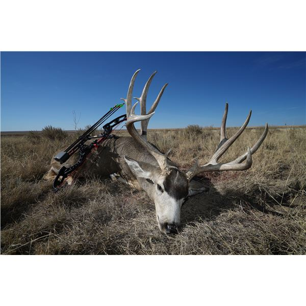 APACHE RANCH: 4- DAY DESERT MULE DEER & AOUDAD HUNT ON THE PRIVATE APACHE RANCH IN CULBERSON COUNTY