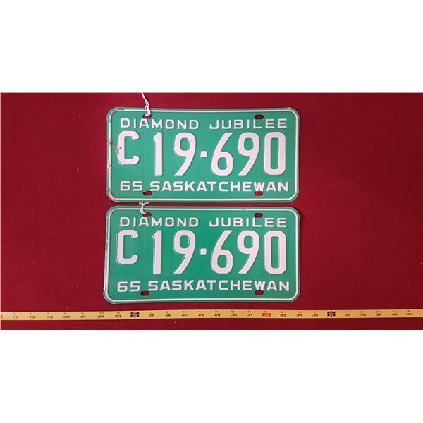 1965 C19.690 Licence Plate Pair