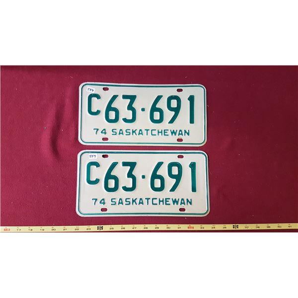 1974 C63.691 Sk Licence Plate Pair