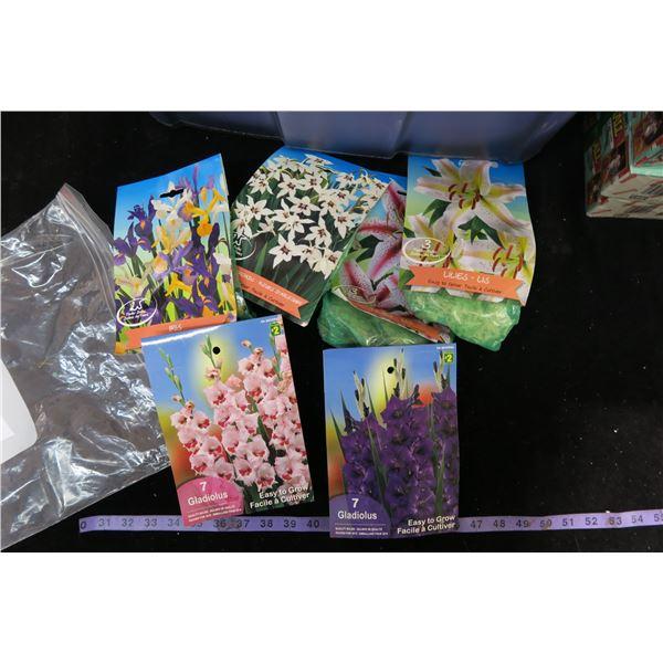 #1234 - 6 Bags of Bulbs (2X-Gladiolas/2X-Lillies/Iris/Orchids)