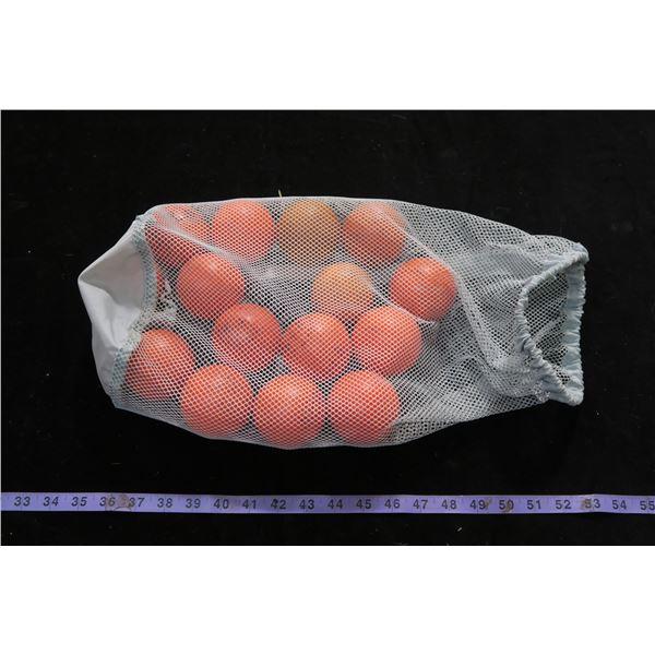 #1254 - Bag of 15 Hockey Balls and Bag