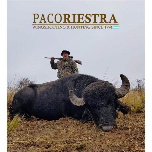 Argentina: 5-day/4-nIght Red Stag or Water Buffalo Hunt