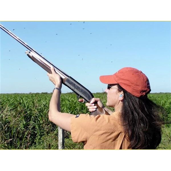 Argentina: 4-Day High Volume Dove Shooting for 4 Hunters