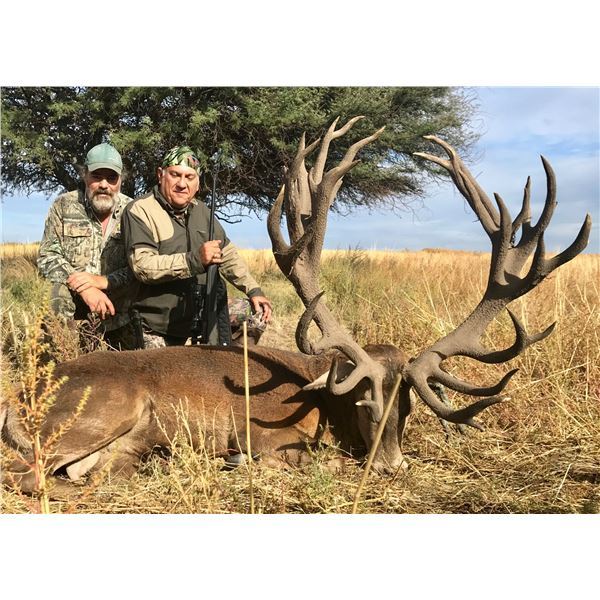 Argentina: 5-day Red Stag Hunt for 1 Hunter