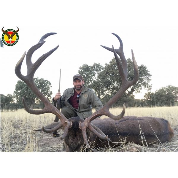 Spain: 4-day Hunt for Iberian Red Deer