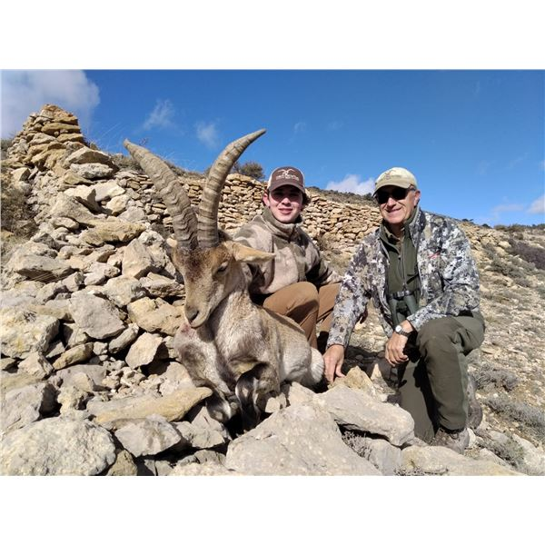 Spain Corju Hunting is offerring a  3 day Management  Beceite Ibex hunt for 1 hunter & 1 non-hunter
