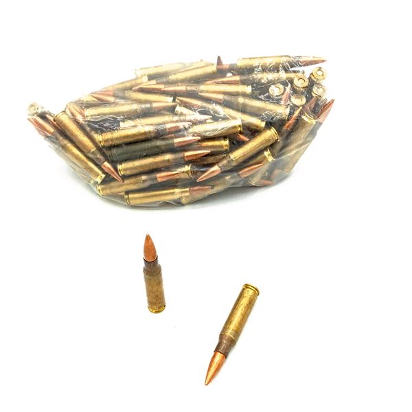 Federal Lake City Milspec 7.62 x 51 Nato Ammunition - 124 Rnds