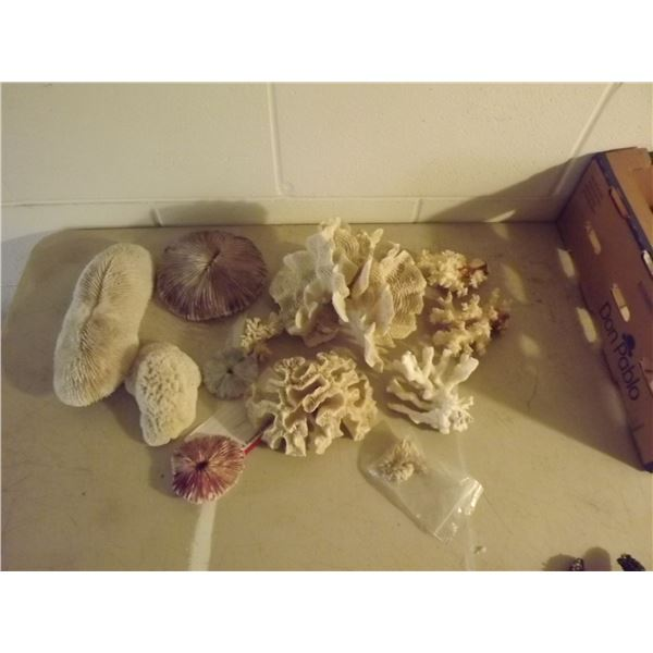 FLAT OF 12 PIECE CORAL SET
