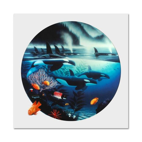 """Wyland, """"Orca Journey"""" Limited Edition Cibachrome, Numbered and Hand Signed with"""