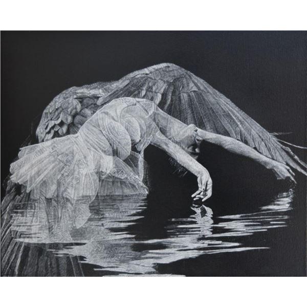 Julio Cesar Delgado Dance of the Birds 9