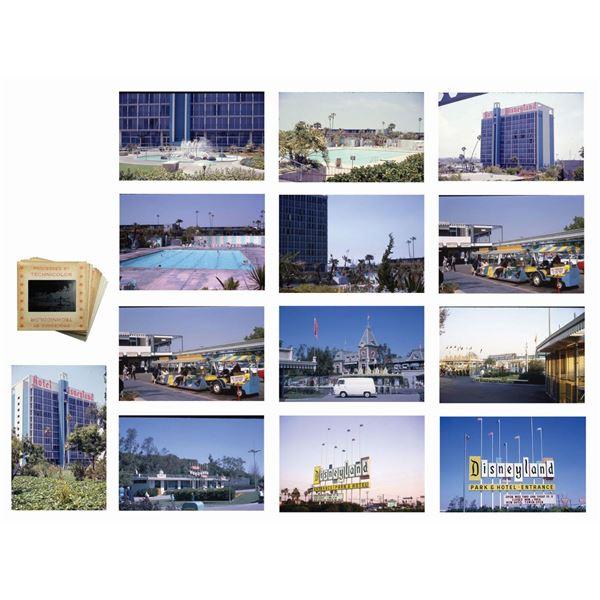 Set of (13) Main Entrance & Disneyland Hotel Slides.