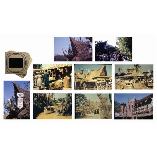 Collection of (9) Adventureland Slides.