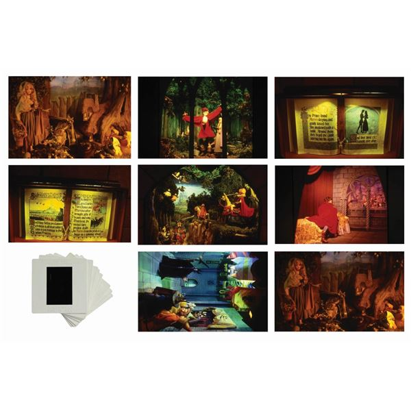 Set of (8) Sleeping Beauty Castle Walkthrough Slides.