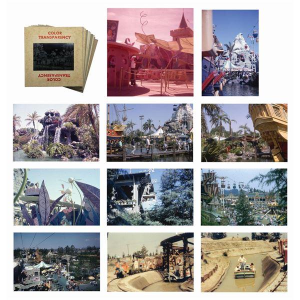 Collection of (11) Fantasyland Slides.