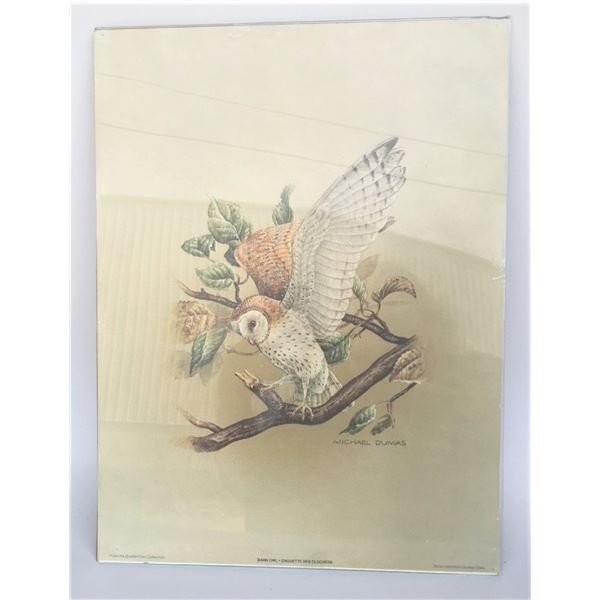 Michael Dumas Quaker Oats Collection Print 12x16 - Barn Owl