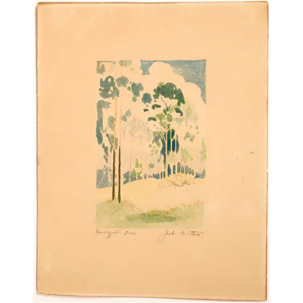 Eucalyptus Trees Titled Artwork.  [131458]