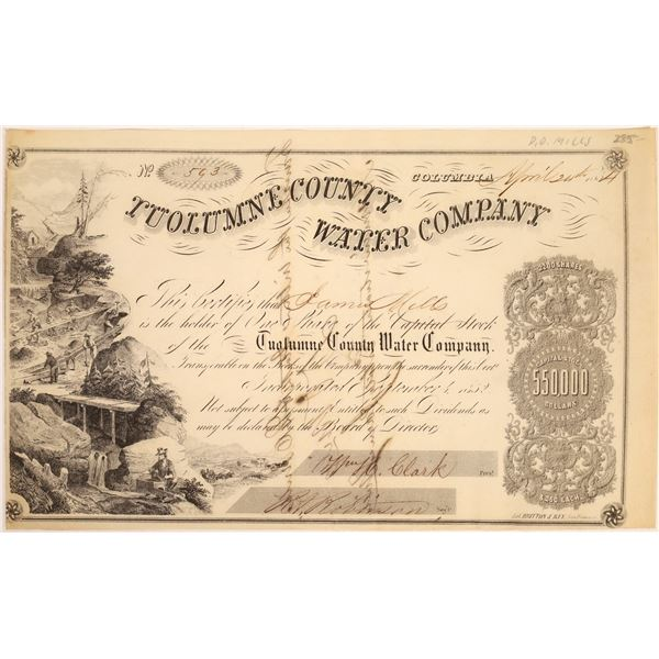 Tuolumne County Water Co. Stock Signed by D.O. Mills  [134064]