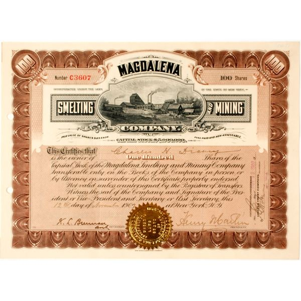 Magdalena Smelting & Mining Co. Stock Certificate, Oaxaca, Mexico 1907  [135402]