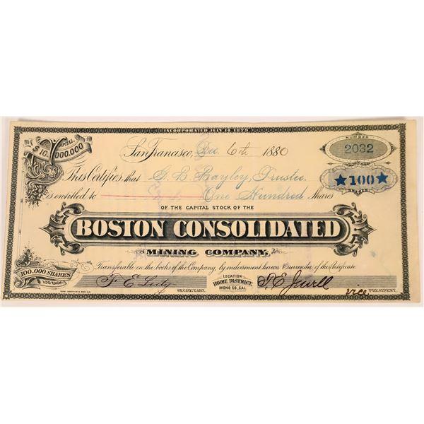 Boston Consolidated Mining Company Stock  [123526]
