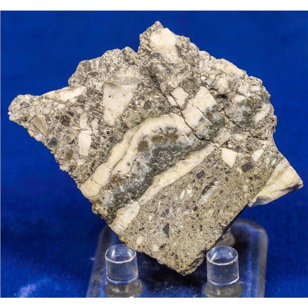 Gold Ore Slab, Cannon Mine, Wenatchee, Washington  [131925]