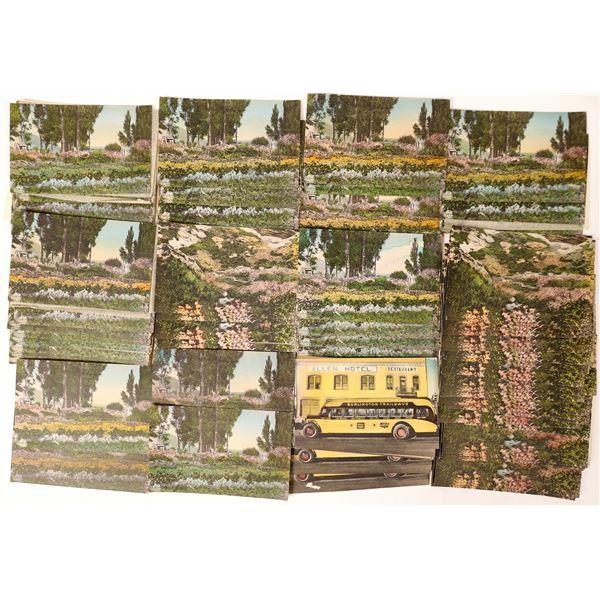 Wells, Nevada / Angel Lagoon Postcard Hoard of J. B. Miles of Ely  [130023]