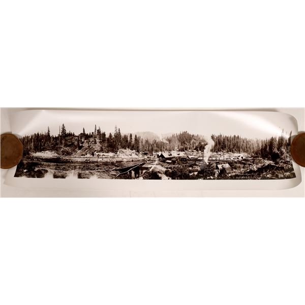 Madera Sugar Pine Co.'s, Panoramic Photograph  [132319]