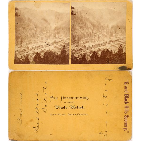 Nice Deadwood, SD Stereo View  [131627]