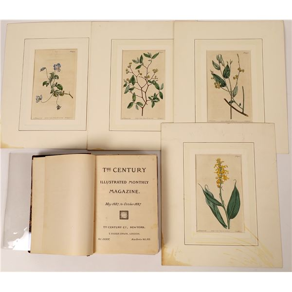 The Century, Volume, 34, 1887 and Four flower prints by E. Sanfom  [131829]