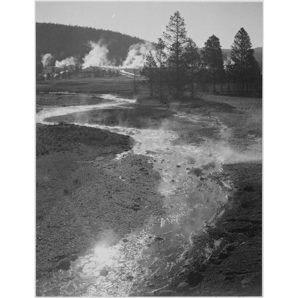 Adams - Central Geyser Basin, Yellowstone National Park, Wyoming