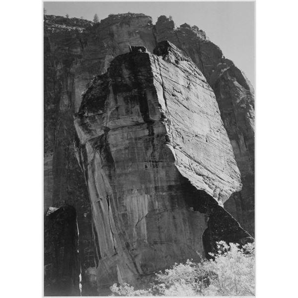 Adams - Zion National Park Utah
