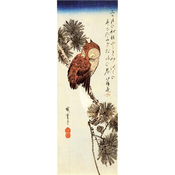 Hiroshige Small Brown Owl on a Pine Branch